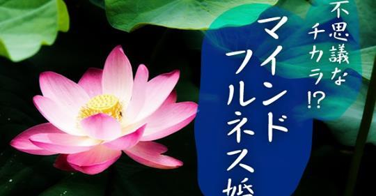 瞑想リラックス マインドフルネスコン開催